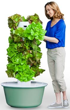 the aeroponic Tower Garden. don't miss this one! realfoodfamily.towergarden.com