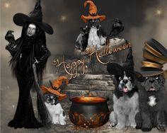 Halloween Wreaths, Halloween, Movie Posters, Movies, Home Decor, Art, 2016 Movies, Homemade Home Decor, Door Wreaths
