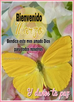 Bienvenido Marzo Prayers, In This Moment, Quotes, Mornings, Motivational, Hollywood, Facebook, Google, Bon Weekend