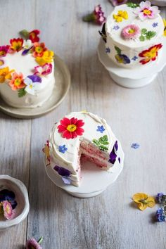 Mini Cakes with Edible Flowers. Taste the rainbow! Learn how to make mini ombré layer cakes brightened with edible flowers. Pretty Cakes, Cute Cakes, Beautiful Cakes, Amazing Cakes, Mini Wedding Cakes, Mini Cakes, Cupcake Cakes, Edible Flowers Cake, Frosting Flowers