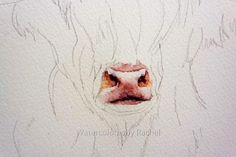 How to paint a highland cow in 7 easy steps – watercolours by rachel Paintings I Love, Animal Paintings, Animal Drawings, Art Drawings, Highland Cow Painting, Highland Cow Art, Highland Cow Canvas, Watercolor Painting Techniques, Watercolor Paintings