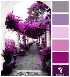 Lilac Heaven: Purple, Lilac, White, Pink, Grey - Colour Inspiration pallet