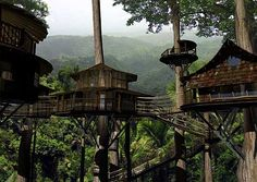 Finca Bellavista | sustainable rainforest treehouse community in costa rica