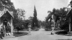Guilherme Gaensly  | Jardim da Luz  | 1903  | 603/E | Acervo de Fotografia do Museu da Cidade
