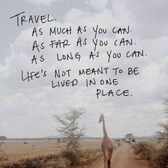 Travelling is the best thing you can do_ #travel #travelling...  Instagram travelquote