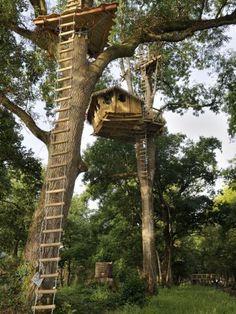 Si les bois nourrissent les poètes, les cabanes abritent les penseurs... « Les noeuds sacrés de la vraie amitié se forment bien plus facilement sous un hu