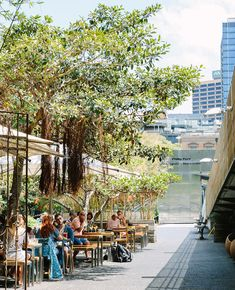 Bodhi is an award winning restaurant specialising in vegan yum cha and pan-Asian cuisine. Sydney Restaurants, Vegan Restaurants, Restaurant Bar, Wedding Venues, Street View, Dinner, Wedding Reception Venues, Dining, Wedding Places