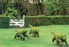 A topiaria é uma técnica de jardinagem que consiste em dar formas artísticas variadas as árvores, principalmente em arbustos e trepadeiras....