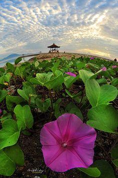 Beautifull Morning at Karang Beach, Sanur, Bali - Greatfull Morning everybody :)