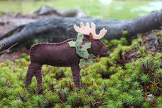 The moose is loose on Downeast Thunder Farm. At least the felt version. It's been years since I saw a moose standing outside my window late one summer night. The crunch of his hooves in the g…