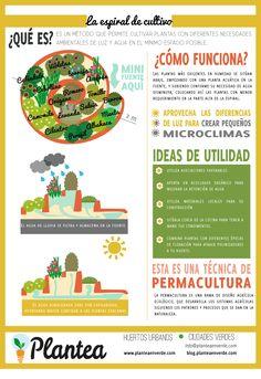 Espiral de #cultivo, técnica de #permacultura, ficha explicativa