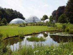Botanical Garden of the University of Zurich (opened in Green Tower, Bubble House, Geodesic Dome Homes, Pergola, Weird Plants, Old Trees, Public Garden, Beautiful Park, Garden Structures
