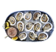 The Only 7 Things You Need to Know About Oysters