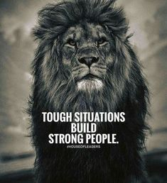 Inspirational Quotes are best served up in picture form. Here we have 200 of the most epic success quotes, wealth quotes, success habits and quotes about success, so you can be inspired. Best Success Quotes, Inspirational Quotes About Success, Motivational Quotes For Success, Quotes About Strength, Great Quotes, Positive Quotes, Quotes Motivation, Determination Quotes, Motivational Images