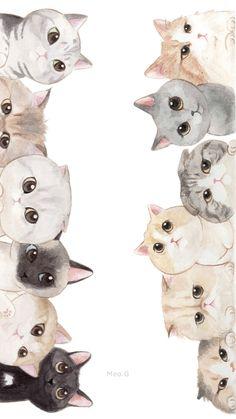 Iphone Wallpaper Cat, Cute Cat Wallpaper, Flower Phone Wallpaper, Kittens Cutest, Cute Cats, Dibujos Zentangle Art, Photo Chat, Cute Animal Drawings, Cat Crafts