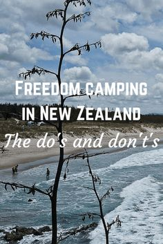 Freedom camping is seen as a cheap option for accommodation in New Zealand. But there are many rules about freedom camping - find out all the details here! New Zealand Itinerary, New Zealand Travel Guide, Camping New Zealand, New Zealand Beach, New Zealand South Island, Europa Camping, Places To Travel, Places To See, New Zealand Adventure