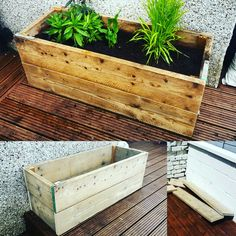 Planter made from scaffolding boards