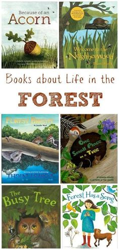 about Life in the Forest Kids Books about Life in the Forest - perfect for nature activities, forest school or STEM projects!Kids Books about Life in the Forest - perfect for nature activities, forest school or STEM projects! Outdoor Education, Outdoor Learning, Outdoor Games, Outdoor Play, Up Book, Book Of Life, Book Art, Forest Animals, Woodland Animals