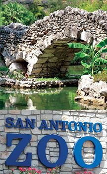 San Antonio Zoo: Home to over animals, including one of the country's largest collections of birds. Also the zoo to breed the endangered whooping crane. Texas Vacations, Texas Roadtrip, Family Vacation Destinations, Texas Travel, Vacation Trips, Vacation Spots, Travel Usa, Family Vacations, Vacation Ideas