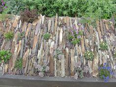 rhs rock gardens - Google Search