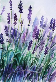 Lavender by lulupapercranes