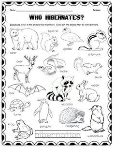 Hibernation vs. Migration: Animal Sorting Worksheet