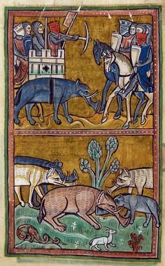 Elephants, English Bestiary (Royal 12 F), author unknown, 13th century, housed at the British Library.