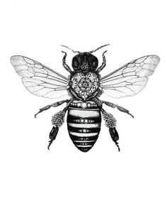 bee design…growing up I was scared of bees but as I have aged I have learned to appreciate them and see their beauty. I love this design.