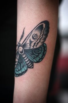 wrap-around moth tattoo w/ teal shading // alice carrier at anatomy tattoo in portland, ore.