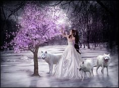Ivy and the wolves