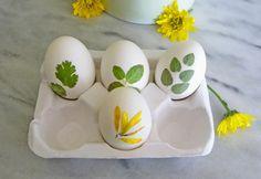 Wystarczy pomalować Troche Białka jaja na liściach i kwiatach, stosując Mały pędzel i delikatnie wciśnij je w skorupce.