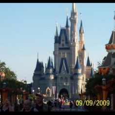 Disneyworld  wonderful vacations and can't wit to take grandkids