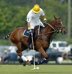 Memo Gracida playing in Florida in 2005.  Photo by David Lominska