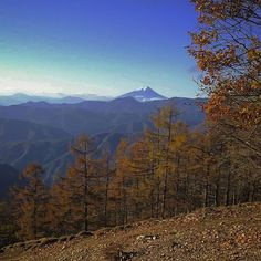 【ajico_fukamidori】さんのInstagramをピンしています。 《2016年11月5日 雲取山☀ 小雲取山から富士山 遠いからちょっとかすんでるけど  #雲取山 #奥多摩 #富士山 #縦走 #百名山 #山 #山登り #登山 #トレッキング #写真好きな人と繋がりたい #森 #秋 #紅葉 #テント #mountain #mountaintrekking #japan #trekking #nature #outdoor #trip #autumn #hiking #naturephotography #forest #backpacking #tent #kumotoriyama #fujisan #fujiyama》