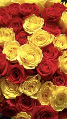Abstract Iphone Wallpaper, Rose Wallpaper, Beautiful Rose Flowers, Pretty Flowers, Red And Yellow Roses, Rose Pictures, Phone Backgrounds, Fantasy Art, Wedding Flowers