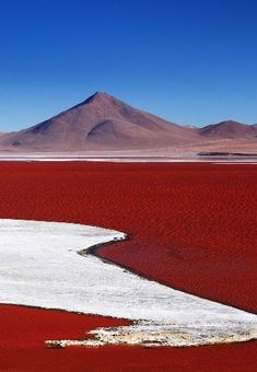 Bolivie Laguna Colorada is a salt lake in Bolivia that gets its red colour from the pigmentation of algae Places To Travel, Places To See, Travel Destinations, Beautiful World, Beautiful Places, Lac Titicaca, Bolivia Travel, Uganda Travel, Les Continents