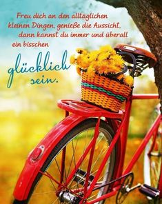 vintage bicycle with flowers on summer landscape background (toned picture) Happiness Challenge, German Quotes, Quotation Marks, Summer Landscape, Greek Quotes, True Words, Cool Words, Feel Good, Quotations