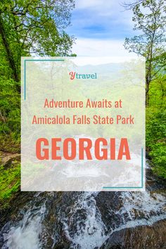 There's a reason Amicalola Falls is one of Georgia's most popular state parks! There are a wide range of outdoor activities that will thrill the whole family. From hiking the falls, and zip lining, to 3D archery, tomahawk throwing and meeting some pretty incredible wildlife! Adventure awaits you at Amicalola Falls State Park. #GeorgiaTravel #AmicalolaFalls #USStateParks #FamilyVacation #FamilyRoadTrip #USRoadTrips #FamilyTravel Rv Travel, Family Travel, 3d Archery, Amicalola Falls, Hiking With Kids, National Parks Usa, Family Road Trips, Adventure Awaits, Outdoor Activities
