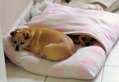 """Make a Cool """"Envelope"""" Dog Bed! Easy sewing pattern!"""