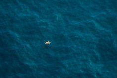 South_Africa_Aerial_Zack_Seckler-2