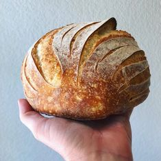 This Sourdough bread recipe uses our Wild Yeast Sourdough Starter recipe, but you can use any starter that is at hydration (equal parts water to flour). I call this the Best Sourdough recipe… Easy Sourdough Bread Recipe, Sourdough Bread Starter, Yeast Bread, Recipe Breadmaker, Sourdough Rye, Artisan Bread Recipes, Bread Maker Recipes, Starter Recipes, Baking Recipes