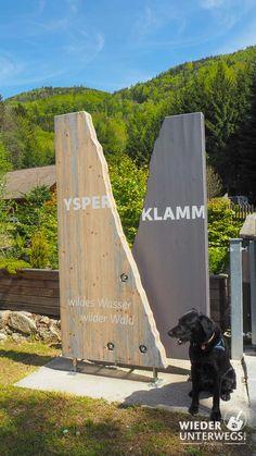 Wanderlust, Surfboard, Switzerland, Outdoor, Ideas, Road Trip Destinations, Explore, Woodland Forest, Destinations