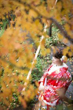 @Mejiro Garden, Toshima, tokyo(目白庭園, 豊島, 東京)