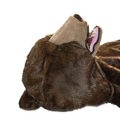 LAUNCHING OUT! The Great Sleeping Bear-multiple version - the 2014