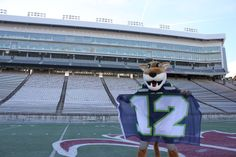 We WAVE THE FLAG for the Super Bowl bound Seattle Seahawks! Go Cougs! Go Hawks!