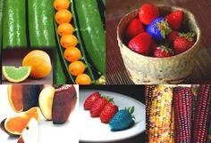 Генно модифицирани култури в земеделието