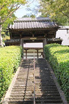 養泉寺(萩寺), Yousenji, (Hagi dera), temple, Fukuchiyama, Kyoto