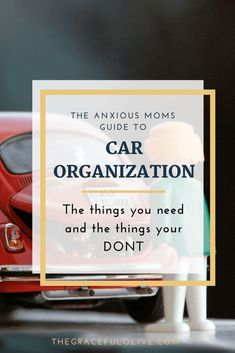 """Pinterest is flooded with images of super-mom car organization with kids. Shoe organizers in the trunk stuffed full of every possible thing that you might ever need for any child type """"emergency"""".Some of this stuff should NOT be kept in your car! Some products will spoil or become ineffective when exposed to extreme heat or cold."""