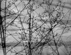 views through my lens, made with the camera, no Photoshop
