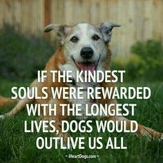 Kind souls should live longest